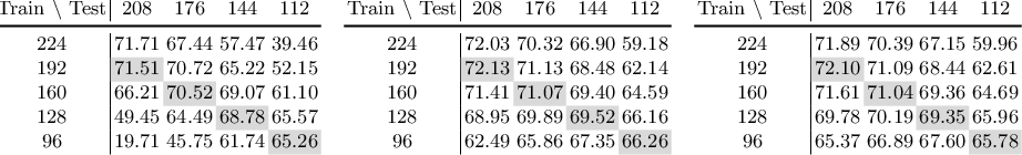 Figure 4 for Learning to Learn Parameterized Classification Networks for Scalable Input Images