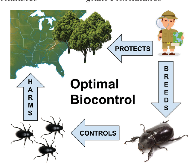 Figure 1 for Scalable Relaxations of Sparse Packing Constraints: Optimal Biocontrol in Predator-Prey Network