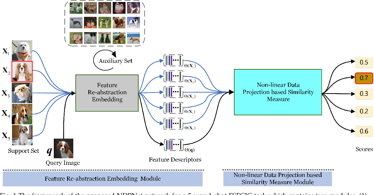 Figure 1 for NDPNet: A novel non-linear data projection network for few-shot fine-grained image classification