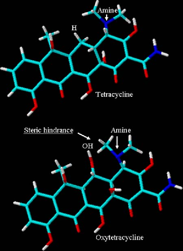 Fig. 4 TET and OTC molecules. The presence of adjacent hydroxyl molecule on the OTC can cause steric hindrance to the cationic amine residue