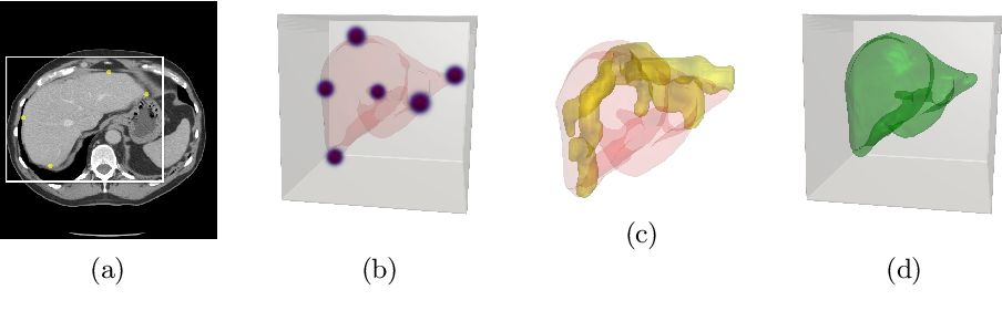 Figure 1 for Weakly supervised segmentation from extreme points