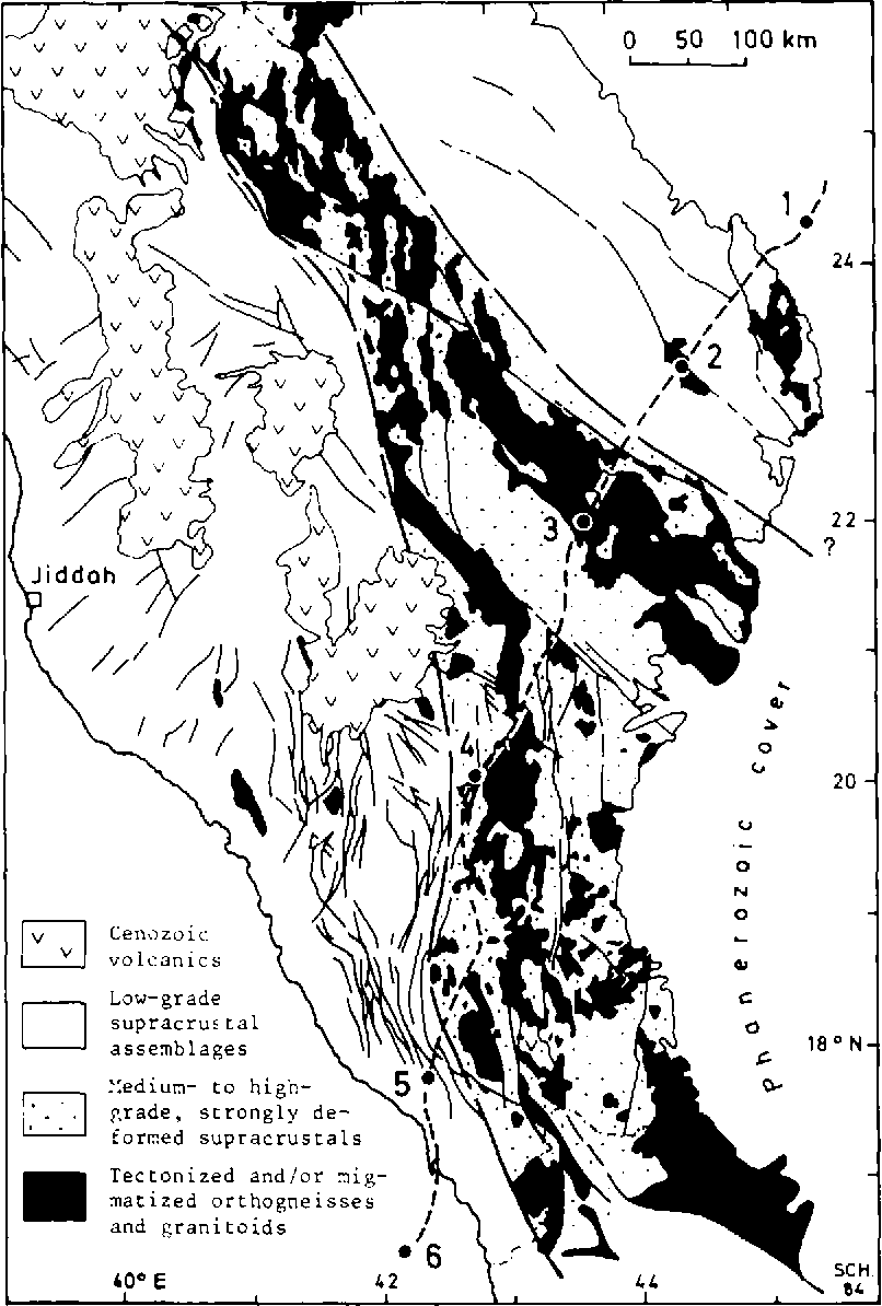 Ophiolites and the evolution of tectonic boundaries in the late