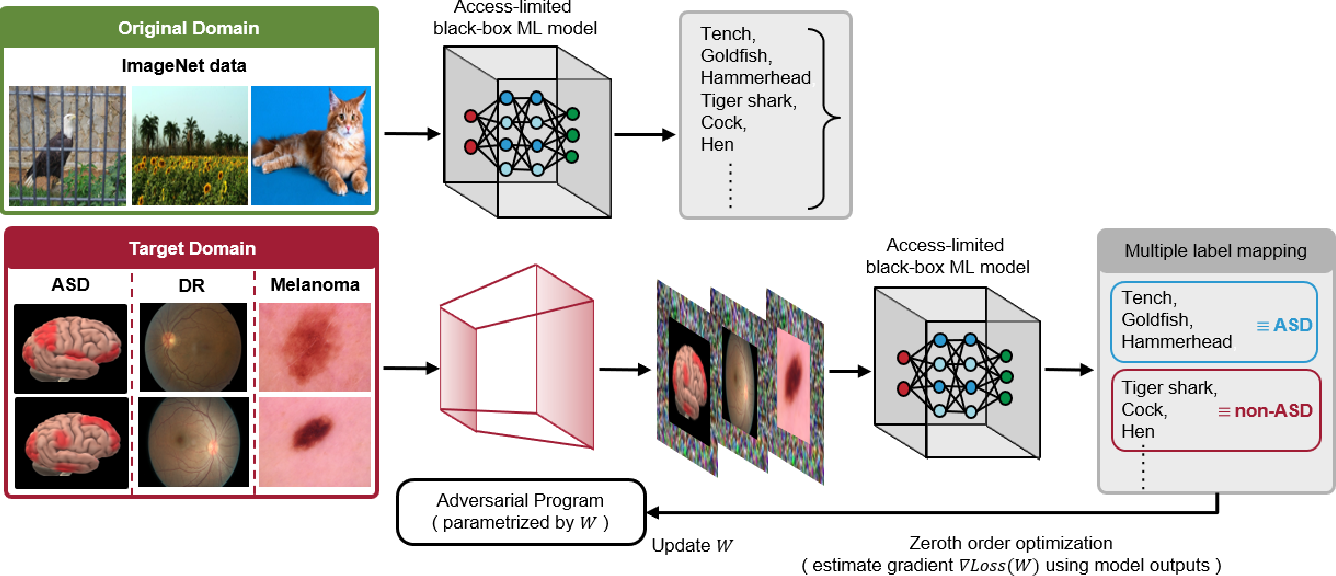 Figure 1 for Transfer Learning without Knowing: Reprogramming Black-box Machine Learning Models with Scarce Data and Limited Resources