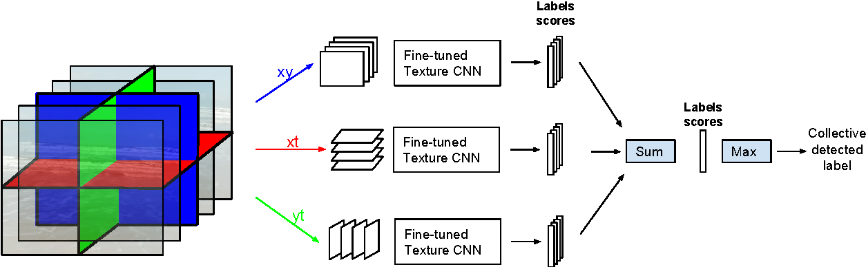 Figure 1 for Convolutional Neural Network on Three Orthogonal Planes for Dynamic Texture Classification