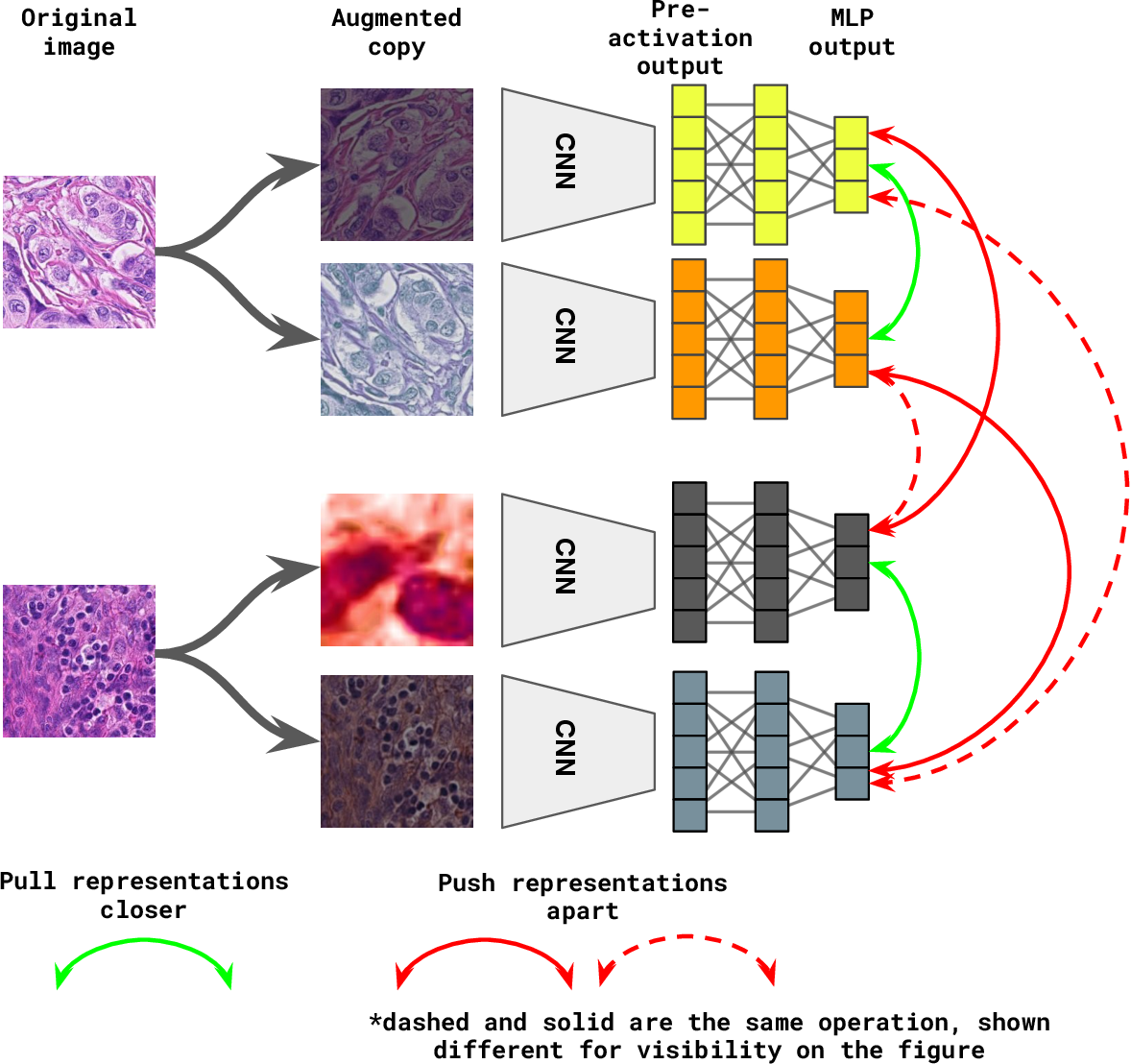 Figure 1 for Self supervised contrastive learning for digital histopathology