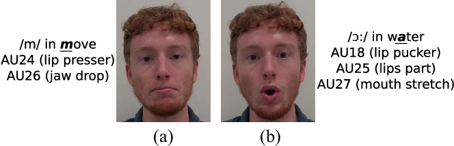 Figure 1 for Improving Speech Related Facial Action Unit Recognition by Audiovisual Information Fusion