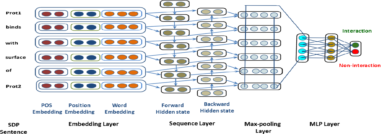 Figure 2 for Feature Assisted bi-directional LSTM Model for Protein-Protein Interaction Identification from Biomedical Texts