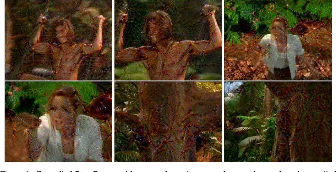 Figure 1 for LucidDream: Controlled Temporally-Consistent DeepDream on Videos