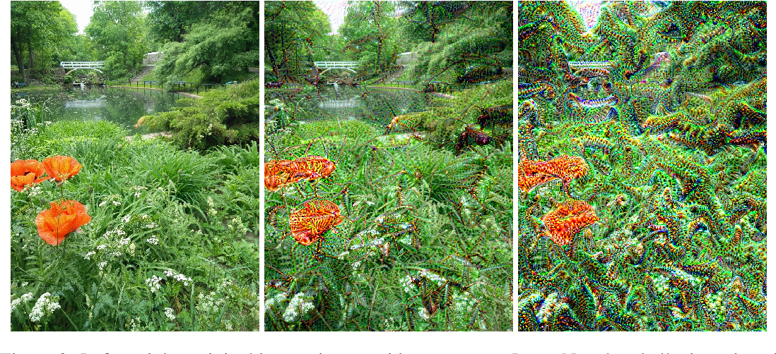 Figure 2 for LucidDream: Controlled Temporally-Consistent DeepDream on Videos