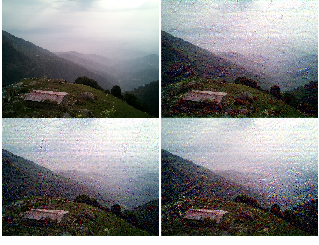 Figure 3 for LucidDream: Controlled Temporally-Consistent DeepDream on Videos