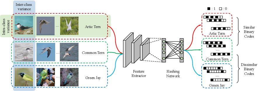 Figure 1 for ExchNet: A Unified Hashing Network for Large-Scale Fine-Grained Image Retrieval