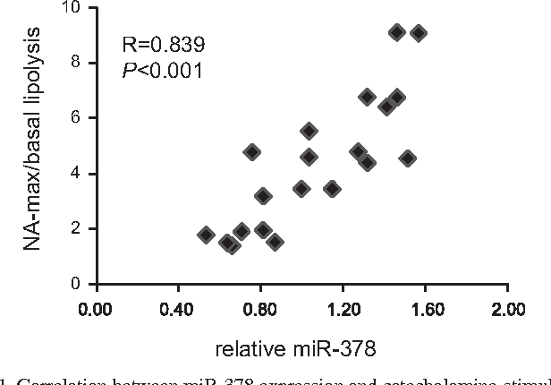 Fig. 1. Correlation between miR-378 expression and catecholamine-stimulated lipolysis. Levels of mRNA were normalized to the reference miR-103a and are shown as relative units (n 20).