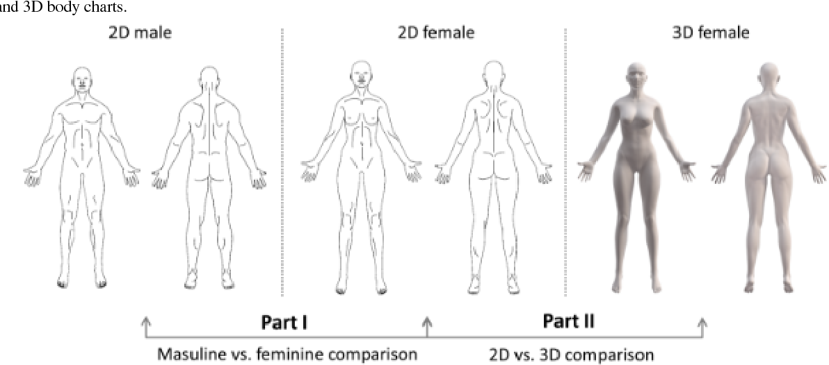 Do Gender Specific And High Resolution Three Dimensional Body Charts