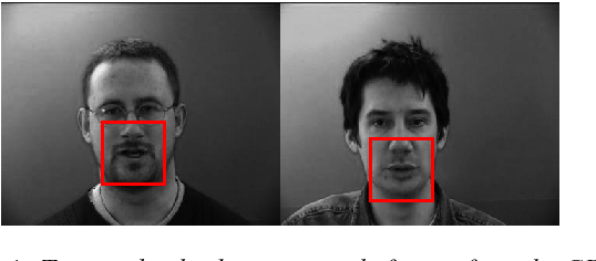 Figure 1 for Improving Speaker-Independent Lipreading with Domain-Adversarial Training