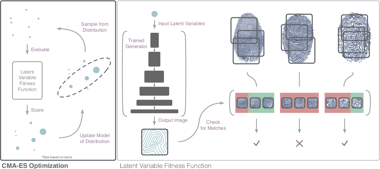 Figure 3 for DeepMasterPrints: Generating MasterPrints for Dictionary Attacks via Latent Variable Evolution