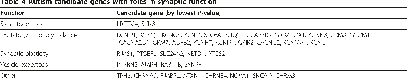 Table 4 Autism candidate genes with roles in synaptic function