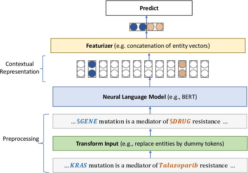 Figure 4 for Domain-Specific Language Model Pretraining for Biomedical Natural Language Processing