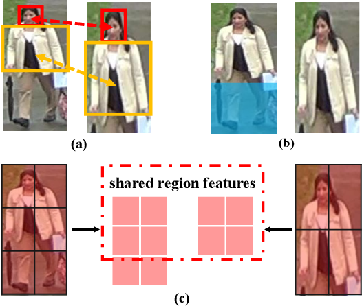 Figure 1 for Perceive Where to Focus: Learning Visibility-aware Part-level Features for Partial Person Re-identification