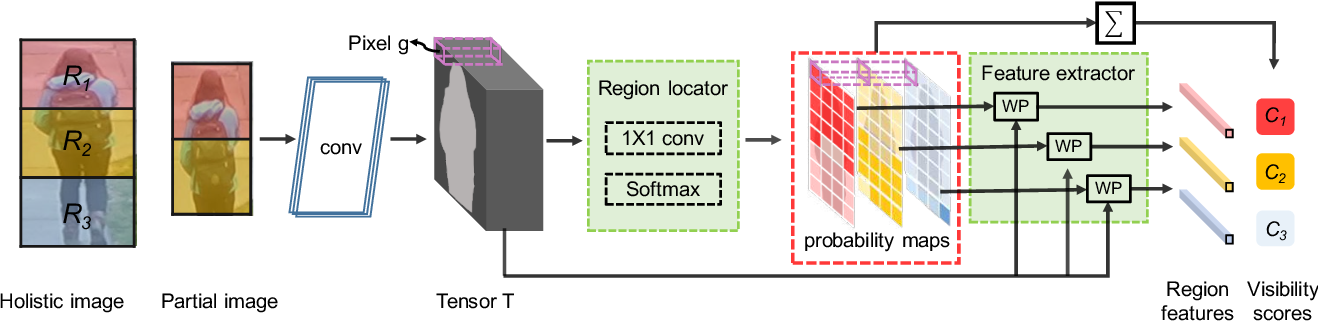 Figure 3 for Perceive Where to Focus: Learning Visibility-aware Part-level Features for Partial Person Re-identification