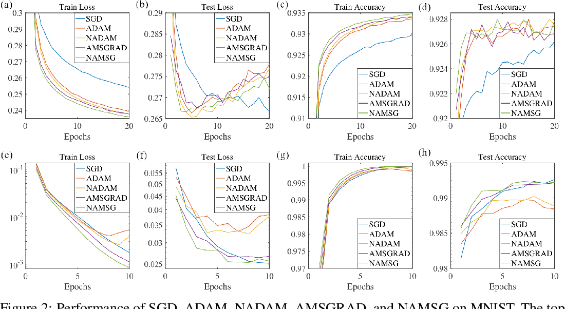 Figure 2 for NAMSG: An Efficient Method For Training Neural Networks