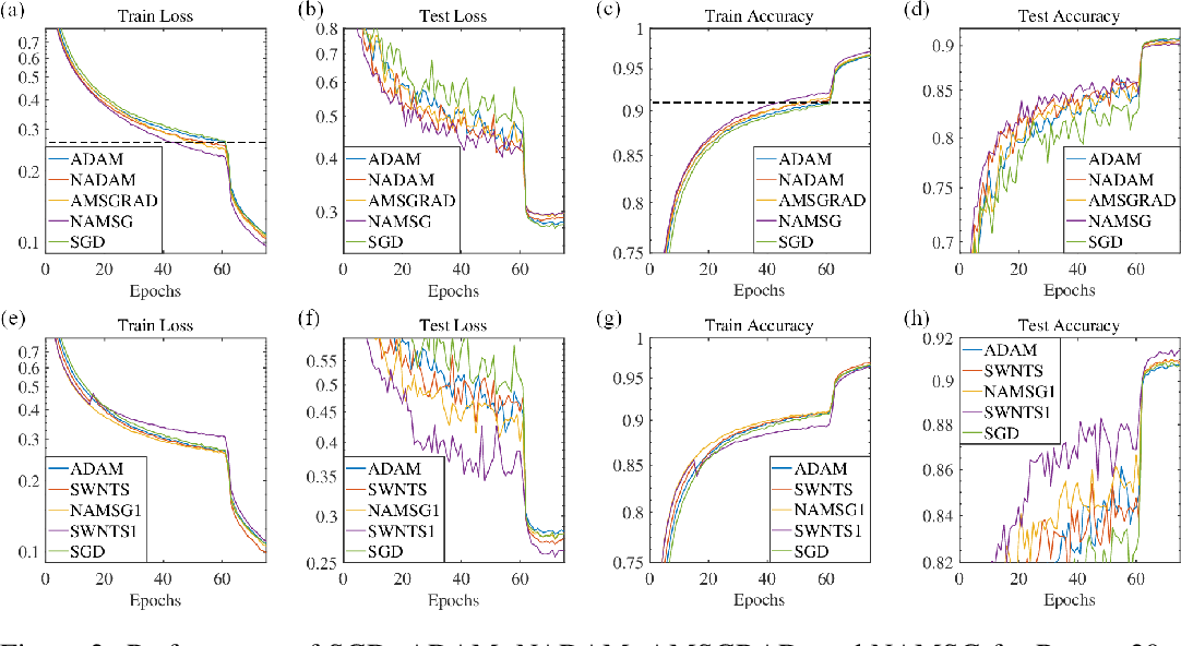 Figure 3 for NAMSG: An Efficient Method For Training Neural Networks
