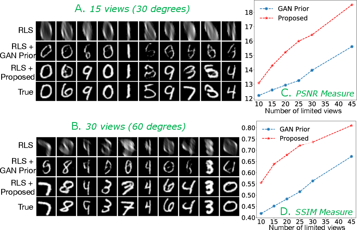 Figure 1 for Improving Limited Angle CT Reconstruction with a Robust GAN Prior