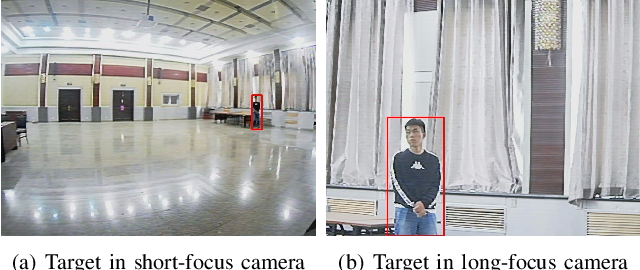 Figure 2 for A Miniature Biological Eagle-Eye Vision System for Small Target Detection