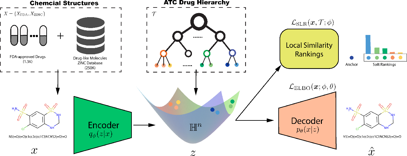 Figure 1 for Semi-Supervised Hierarchical Drug Embedding in Hyperbolic Space