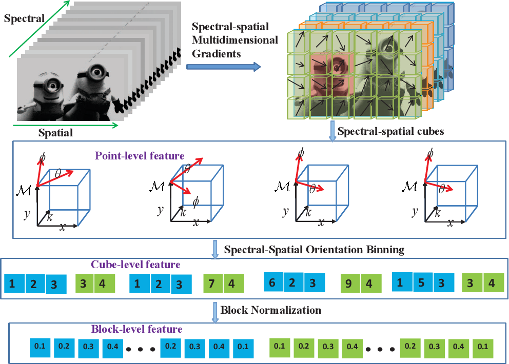 Figure 4 for Spectral-spatial features for material based object tracking in hyperspectral videos