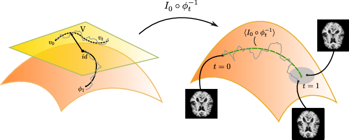 Figure 1 for Stochastic Image Deformation in Frequency Domain and Parameter Estimation using Moment Evolutions