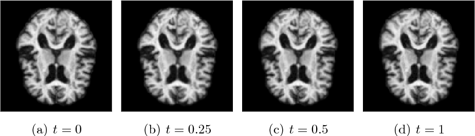 Figure 3 for Stochastic Image Deformation in Frequency Domain and Parameter Estimation using Moment Evolutions
