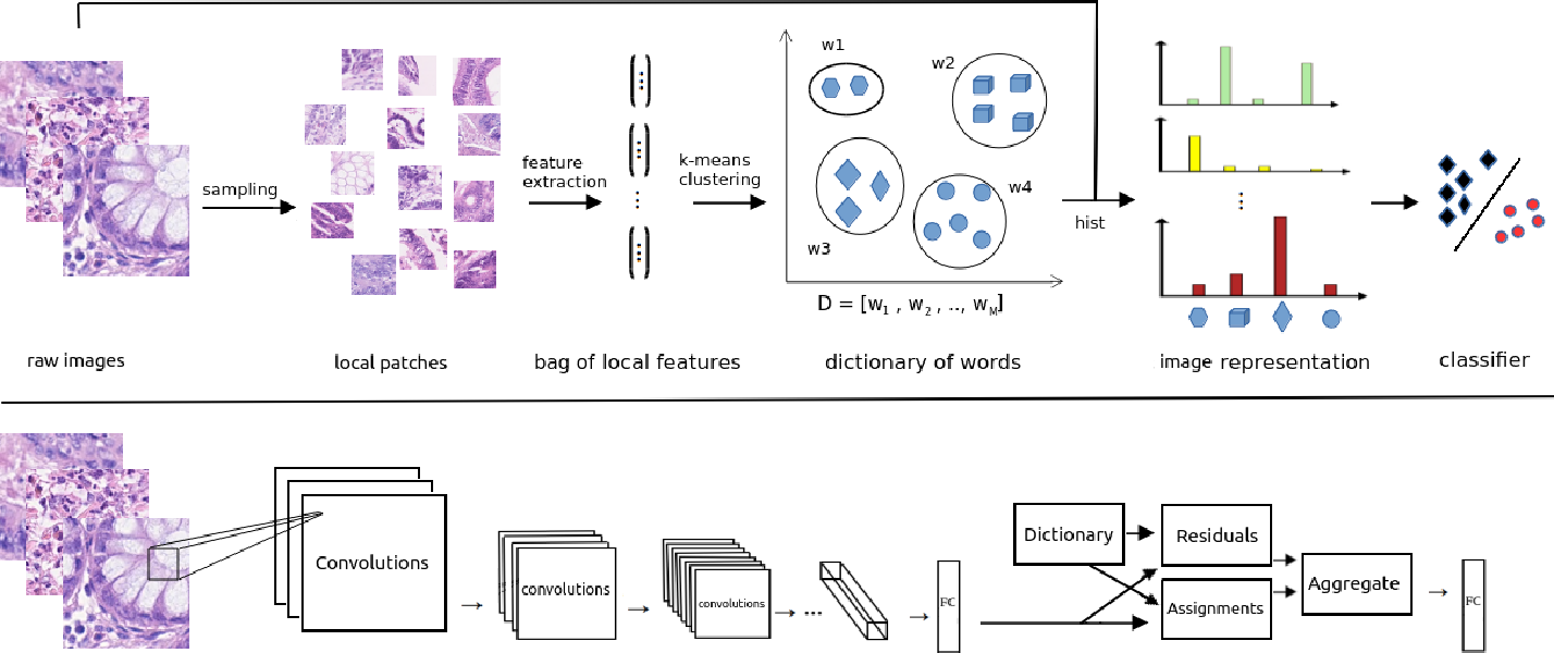 Figure 1 for Deep Multi-Resolution Dictionary Learning for Histopathology Image Analysis