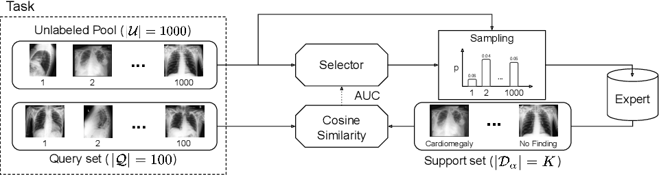 Figure 1 for MedSelect: Selective Labeling for Medical Image Classification Combining Meta-Learning with Deep Reinforcement Learning