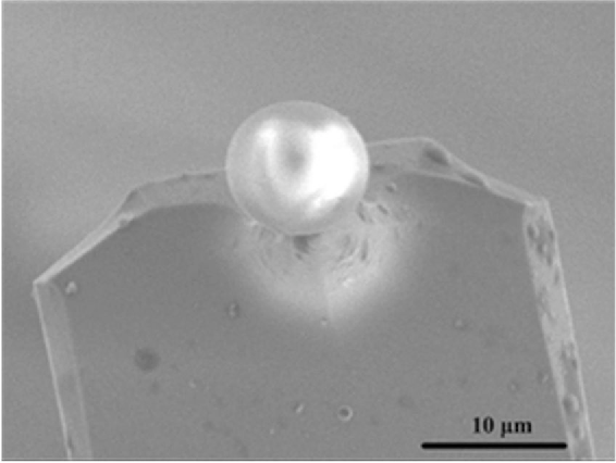 Figure 8. SEM image of a SiO2 sphere modified AFM cantilever.
