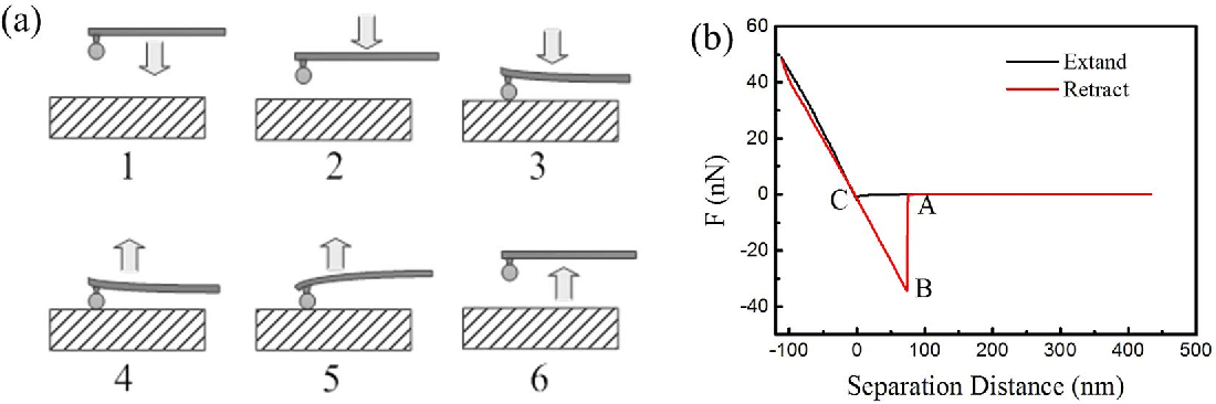 Figure 10. Schematic diagram of adhesion force measurement process (a) extant and retract (b) force curve measured by the fine particle colloidal probe.