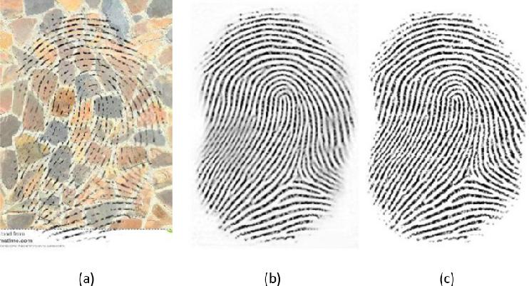 Figure 4 for U-Finger: Multi-Scale Dilated Convolutional Network for Fingerprint Image Denoising and Inpainting