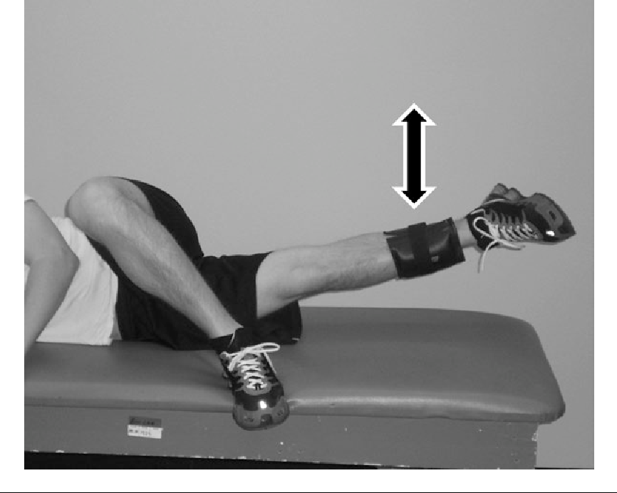 Figure 2 from Adductor longus activation during common hip exercises