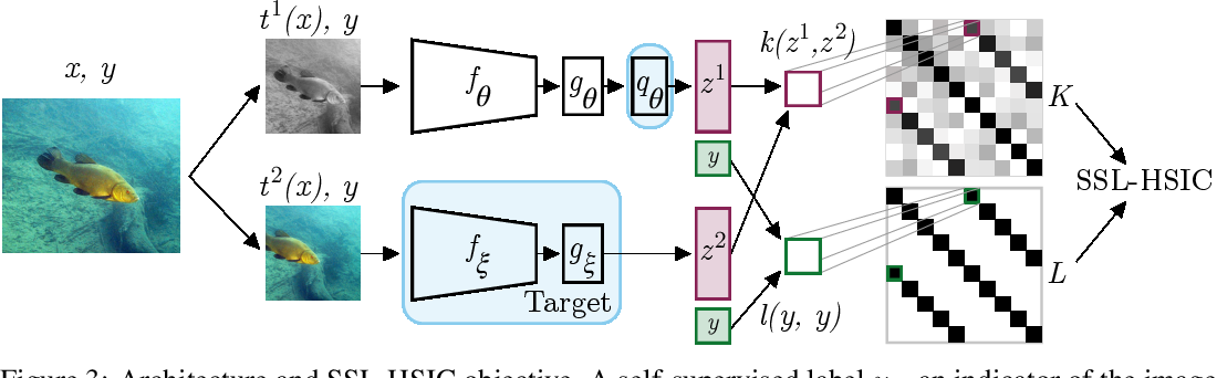 Figure 4 for Self-Supervised Learning with Kernel Dependence Maximization