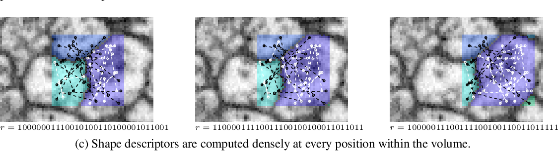 Figure 2 for Combinatorial Energy Learning for Image Segmentation