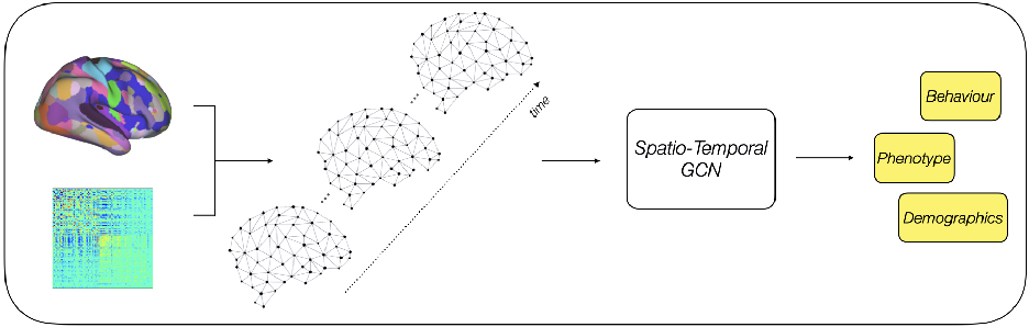 Figure 1 for Improving Phenotype Prediction using Long-Range Spatio-Temporal Dynamics of Functional Connectivity