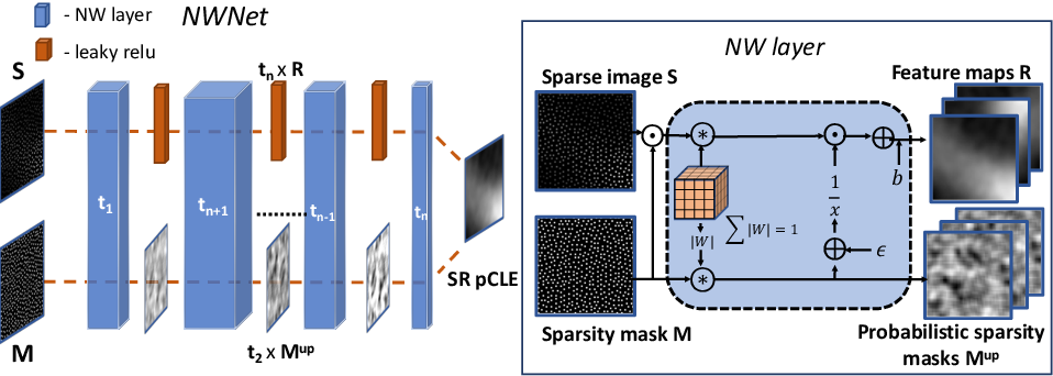 Figure 3 for Learning from Irregularly Sampled Data for Endomicroscopy Super-resolution: A Comparative Study of Sparse and Dense Approaches