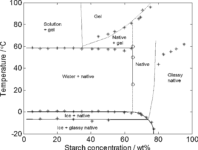 Understanding starch gelatinization the phase diagram approach figure 8 ccuart Images