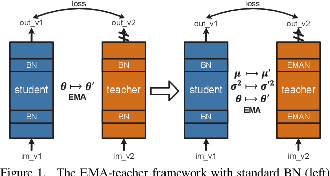 Figure 1 for Exponential Moving Average Normalization for Self-supervised and Semi-supervised Learning