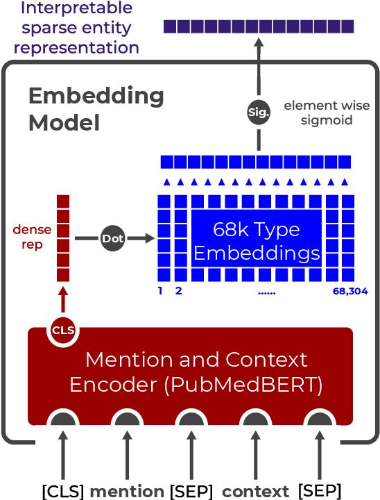 Figure 1 for Biomedical Interpretable Entity Representations