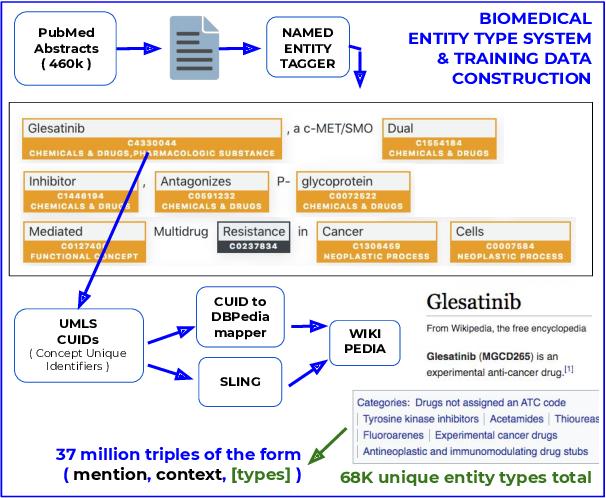 Figure 3 for Biomedical Interpretable Entity Representations