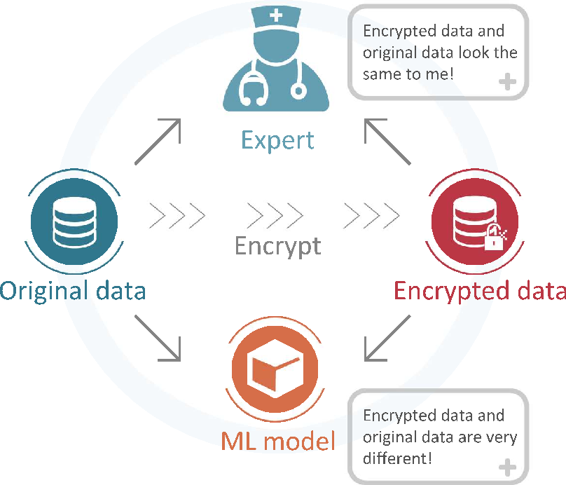Figure 1 for Adversarial Data Encryption