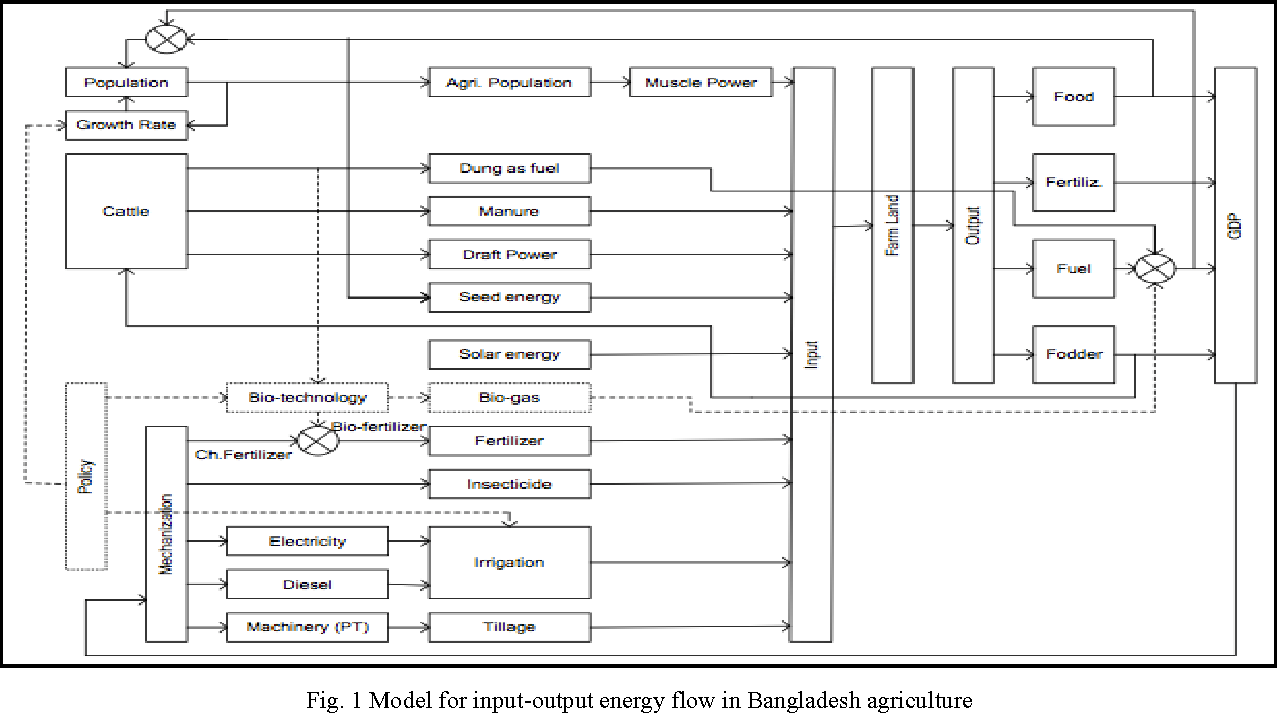 Fig. 1 Model for input-output energy flow in Bangladesh agriculture