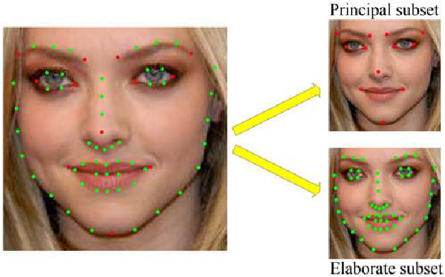 Figure 1 for Learning deep representation from coarse to fine for face alignment