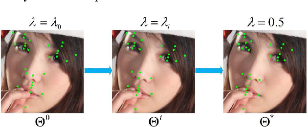 Figure 3 for Learning deep representation from coarse to fine for face alignment