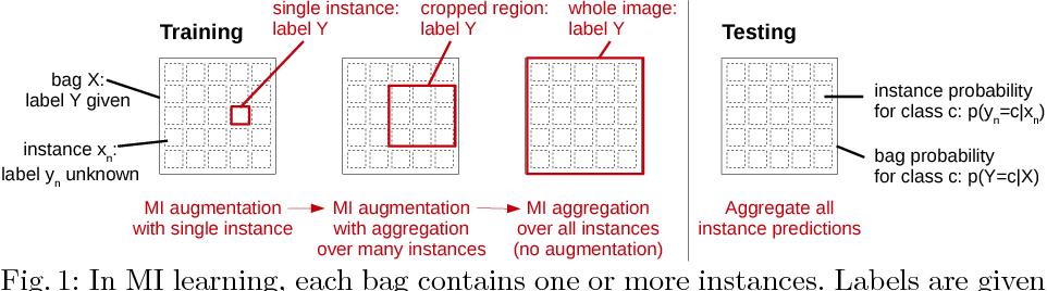 Figure 1 for Multiple Instance Learning for Heterogeneous Images: Training a CNN for Histopathology